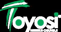 Toyosi Akerele | Official Website Logo